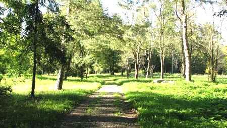 Amara dendrological park
