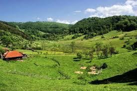 Gradistea Muncelului Natural Park - Cioclovina