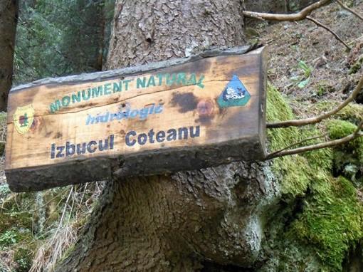 The Coteanu Sinaia outbreak