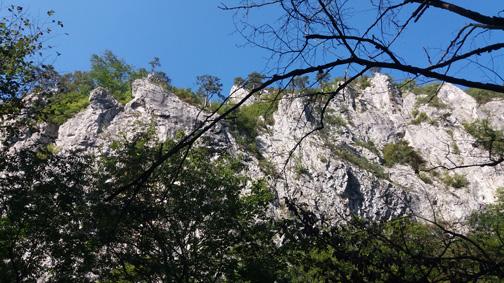 Zona Herculane