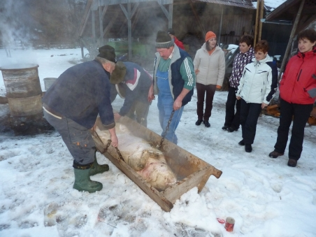 Cutting the traditional pig
