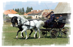 The contest of imperial carriages