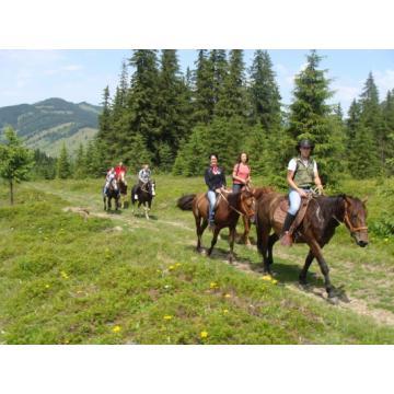 Horse riding Vatra Dornei