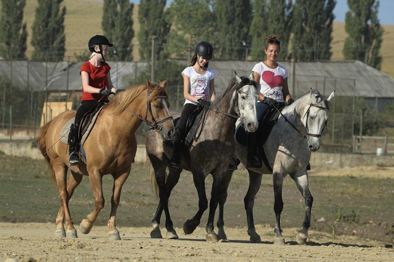 Equestrian Center Agrement- Cai