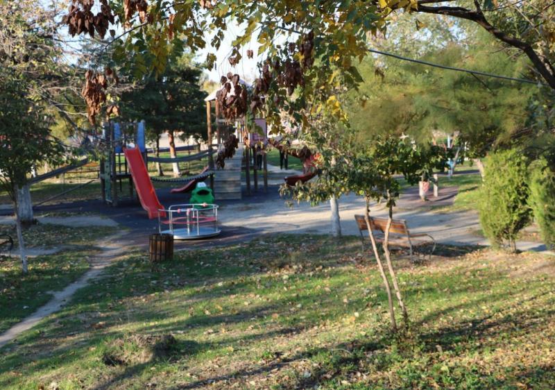Tineretului Park Buzau