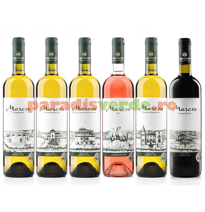 Stefanesti House of wines