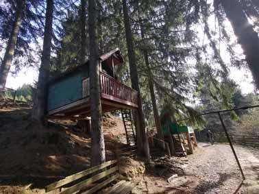 Tree houses in Martanus Baths