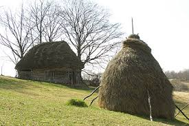 Barn with straw