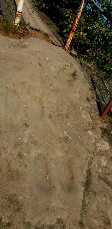 Negru Voda steps