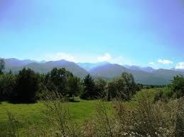 Mohalsul Lacul Tatarului