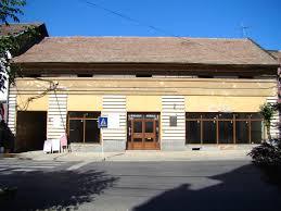 Iuliu Maniu House