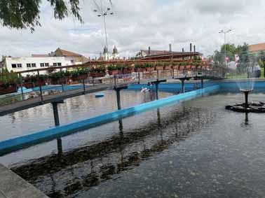 Avram Iancu Park